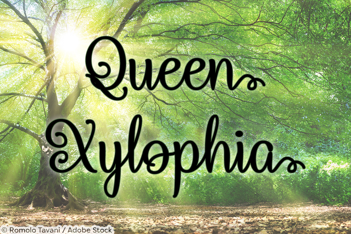 Queen Xylophia by Misti's Fonts. Image credit: © Romolo Tavani / Adobe Stock