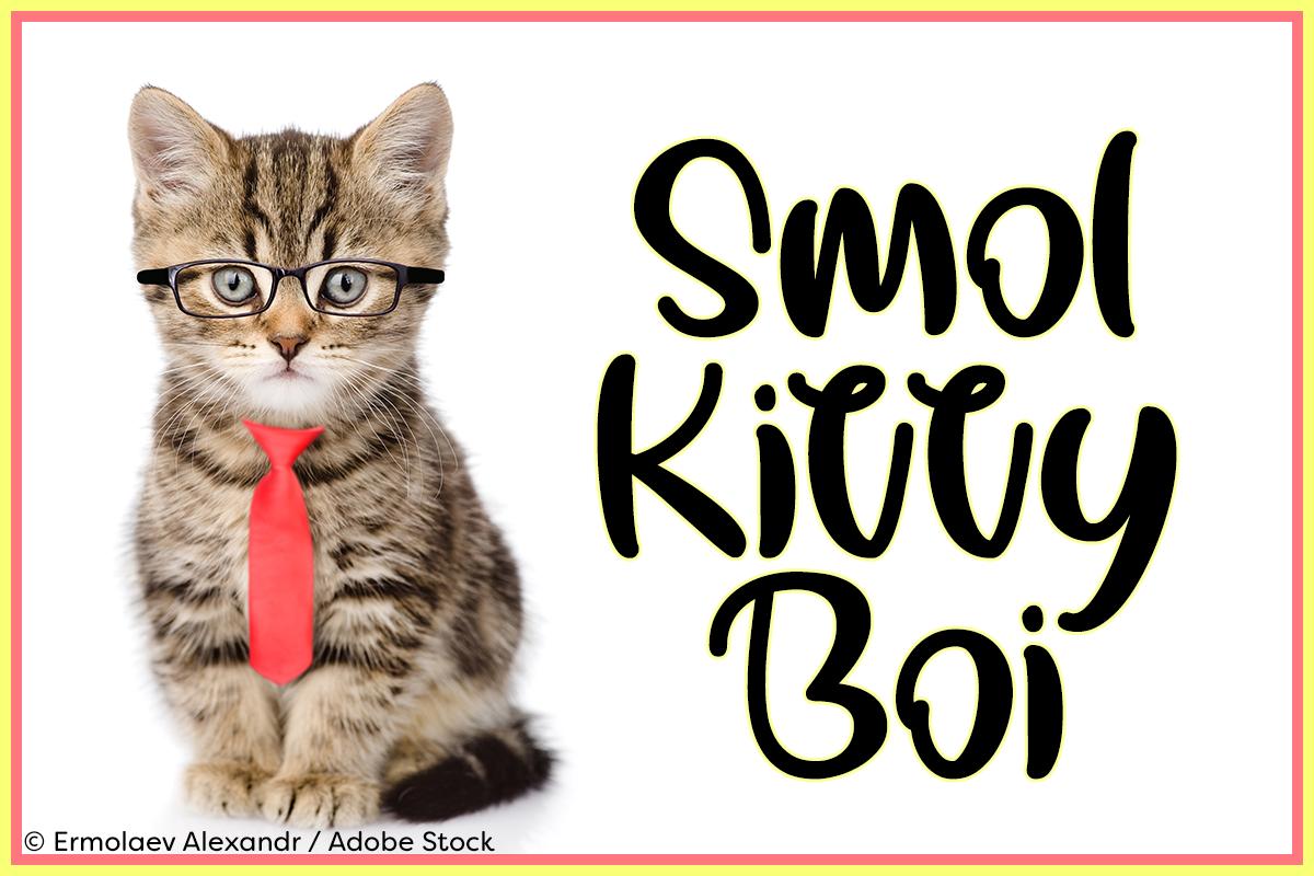 Smol Kitty Boi by Misti's Fonts. Image credit: © Ermolaev Alexandr / Adobe Stock