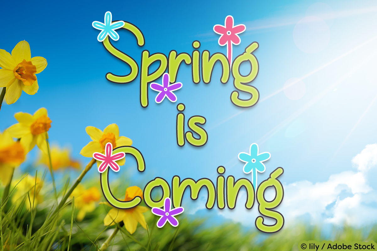 Spring is Coming by Misti's Fonts. Image credit: © lily / Adobe Stock