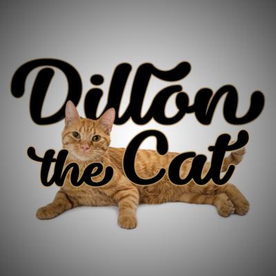 Dillon the Cat
